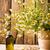 ромашка · чай · таблице · Кубок · жидкость · свежие - Сток-фото © gitusik
