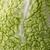 растительное · саду · капуста · растений · зеленый · растущий - Сток-фото © gitusik