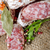 salami and spices stock photo © givaga