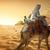 deve · dekore · edilmiş · deve · yıl · seyahat · kafa - stok fotoğraf © givaga