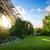 Эйфелева · башня · закат · Париж · Франция · ретро · город - Сток-фото © givaga