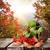 bevroren · voedsel · vruchten · ijs · witte - stockfoto © givaga