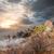 谷 · 幽霊 · 山 · 空 · 雲 · 風景 - ストックフォト © givaga