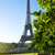 flower and eiffel tower stock photo © givaga