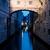 ponte dei sospiri stock photo © givaga