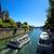 Paris · catedral · verão · dia · edifício - foto stock © givaga