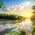stream · tramonto · acqua · erba · legno · foglia - foto d'archivio © givaga
