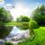 zonnestraal · groene · bos · water · boom · voorjaar - stockfoto © givaga