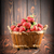 strawberries in a basket stock photo © givaga