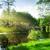 высушите · землю · воды · треснувший · земле · природы - Сток-фото © givaga