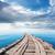 bridge in the ocean stock photo © givaga