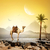 camel and moon stock photo © givaga