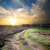 country road through the plowed field stock photo © givaga