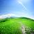 新鮮な · 緑 · 道路 · 青 · 曇った · 空 - ストックフォト © givaga