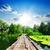 болото · реке · южный · Иллинойс - Сток-фото © givaga