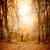 осень · аннотация · лист · Элементы · Nice · детали - Сток-фото © givaga