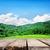 blue · sky · piso · de · madeira · céu · quadro · verão · azul - foto stock © givaga