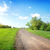 wide road in the field stock photo © givaga