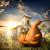 zucche · tramonto · cielo · felice · halloween · tavolo · in · legno - foto d'archivio © givaga