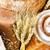 全粒小麦 · ベーグル · 孤立した · 白 · パン · 小麦 - ストックフォト © givaga