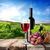 стекла · виноград · таблице · фрукты · зеленый - Сток-фото © givaga