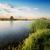sole · stagno · erba · verde · cielo · acqua · erba - foto d'archivio © givaga