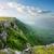 berg · plateau · achtergrond · zomer · koe - stockfoto © givaga