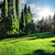 zöld · fű · zöld · kert · gyep · fű · árnyékok - stock fotó © givaga