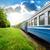 em · movimento · trem · rápido · antiquado · verão · negócio - foto stock © givaga