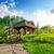 casa · topo · blue · sky · casa · janela · verão - foto stock © givaga