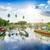palmera · barcos · puesta · de · sol · isla · tropical · mar · palma - foto stock © givaga
