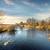 ripple on the autumn river stock photo © givaga