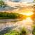 緑 · 森林 · ストリーム · 山 · 川 · 下がり - ストックフォト © givaga