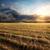 oranje · zonsondergang · zonnestralen · mooie · donkere · wolken - stockfoto © givaga