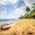 idílico · praia · Sri · Lanka · tropical · paraíso · árvore - foto stock © givaga
