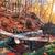 córrego · montanha · floresta · outono · cenário · montanhas - foto stock © givaga