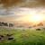 рельеф · пород · текстуры · природы · пластина · почвы - Сток-фото © givaga