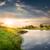реке · лес · лет · трава - Сток-фото © givaga