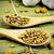 ayçiçeği · tohumları · kaşık · doğa · beyaz · tohum - stok fotoğraf © Gloszilla