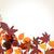 otono · árbol · vector · textura · resumen · diseno - foto stock © glyph