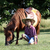 happy boy with pony horse pet stock photo © goce