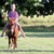 boy riding pony horse in park stock photo © goce