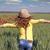 フィールド · 小さな · 緑 · 小麦 · 未熟 · 麦畑 - ストックフォト © goce