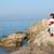 пляж · мелодия · красивая · девушка · Бикини · Солнцезащитные · очки - Сток-фото © goce