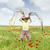 gelukkig · kinderen · meisje · springen · voorjaar · poppy - stockfoto © goce