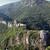 牙城 · 森林 · 古代 · 城 · 落葉性の - ストックフォト © goce