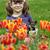 little girl with puppy in the tulip flower garden stock photo © goce