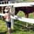 little girl with horses farm scene stock photo © goce
