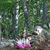 beautiful little girl meditating in the forest stock photo © goce