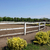 ranch with corral for horses stock photo © goce